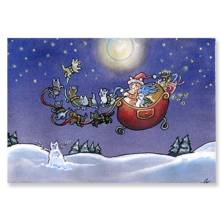 personalized pit stop funny christmas cards humorous 24 boxed ...